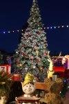 Farley's Christmas in Santa Cruz